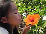 Hawaii_aulani_032_2